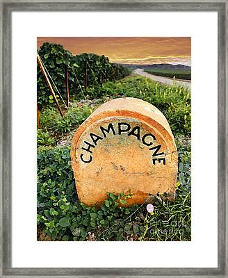 Champagne Area  Framed Print by Tony Craddock