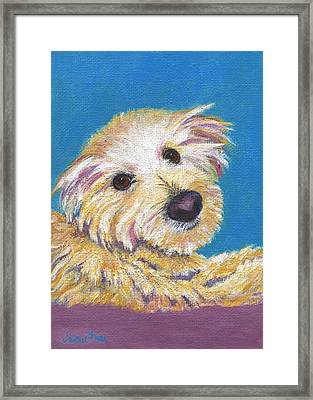 Framed Print featuring the painting Chance by Jamie Frier