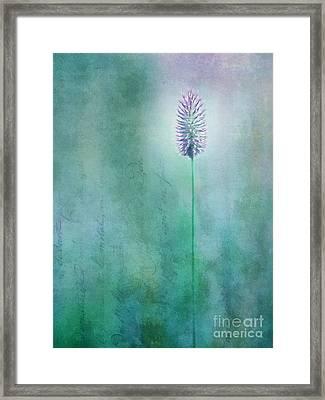 Chandelle Framed Print by Priska Wettstein