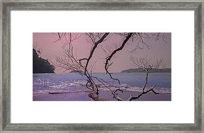 Change Of Tide Framed Print by Betsy Knapp