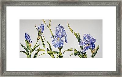 Changes-in-a-life Framed Print by Nancy Newman