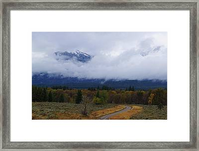 Changing Of The Season's Framed Print
