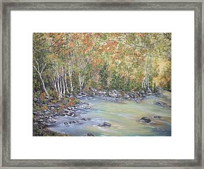 Changing Seasons Framed Print by Bev  Neely