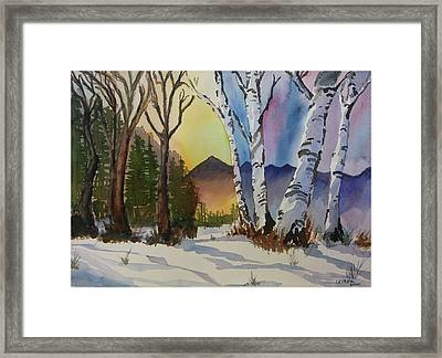 Changing Seasons Conflicts Framed Print by Donna Leiber
