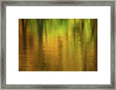 Changing Seasons Reflecting Framed Print by Karol Livote