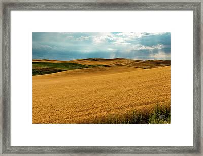 Changing Weather Framed Print