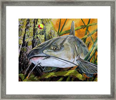 Channel Catfish Framed Print by Karl Wagner
