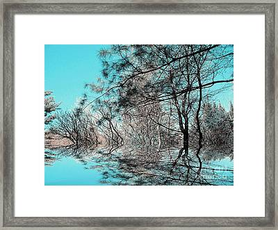 Framed Print featuring the photograph Chaos  by Elfriede Fulda