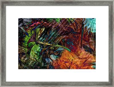 Chaos In Solitude V Framed Print