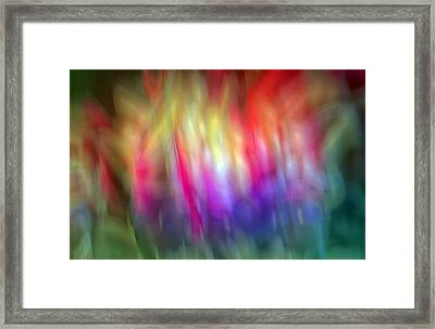 Chaotic Mind Framed Print