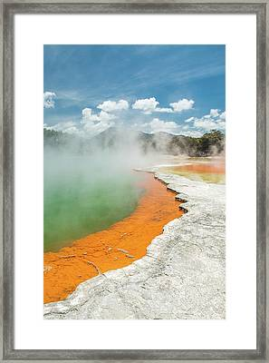 Champagne Pool Framed Print