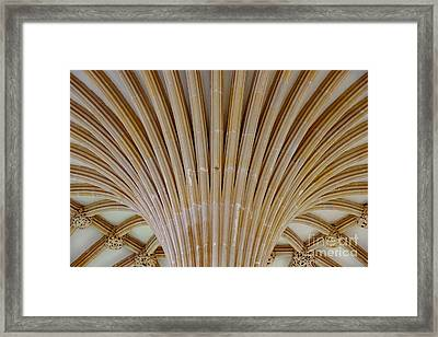 Chapter House Ceiling, Wells Cathedral. Framed Print by Colin Rayner