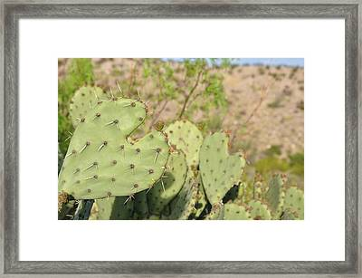 Character Cacti Framed Print by Thor Sigstedt