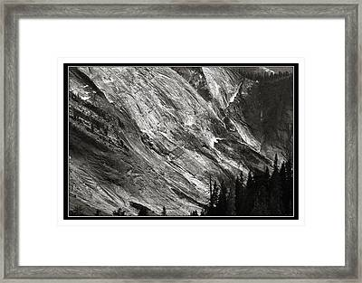 Framed Print featuring the photograph Character by Thomas Bomstad