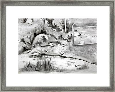 Pat's Field Framed Print
