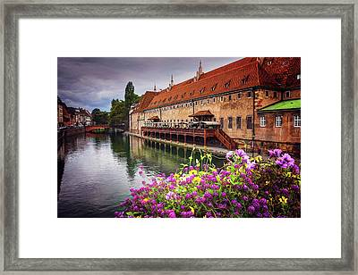 Charismatic Strasbourg France  Framed Print