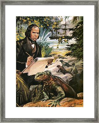 Charles Darwin On The Galapagos Islands Framed Print by Andrew Howat