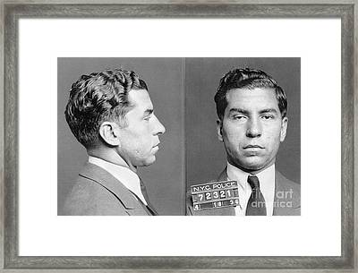 Framed Print featuring the photograph Charles Lucky Luciano by Granger