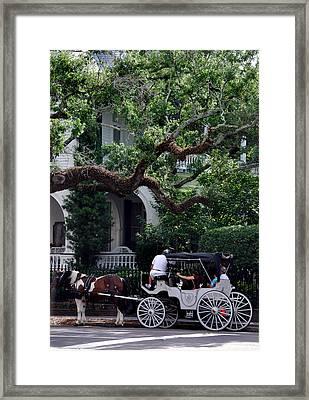 Charleston Buggy Ride Framed Print by Skip Willits