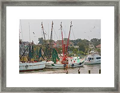 Charleston Sc 3 Framed Print