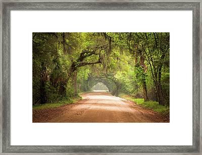 Charleston Sc Edisto Island Dirt Road - The Deep South Framed Print