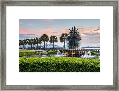 Charleston South Carolina Downtown Waterfront Park Pineapple Fountain Framed Print