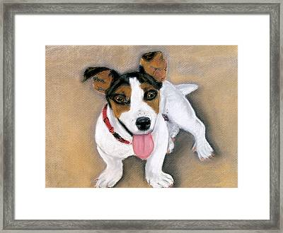 Framed Print featuring the pastel Charley by Jan Amiss