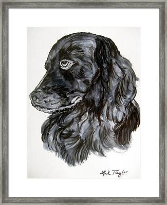 Charlie Framed Print by Lil Taylor
