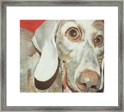 Charlie Framed Print by Linda Deater