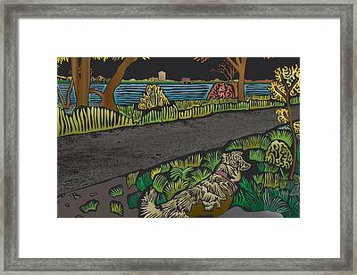 Charlie On Path Framed Print by Kevin McLaughlin