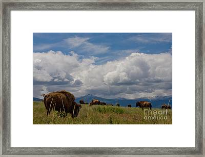 Charlie Russel Clouds Framed Print