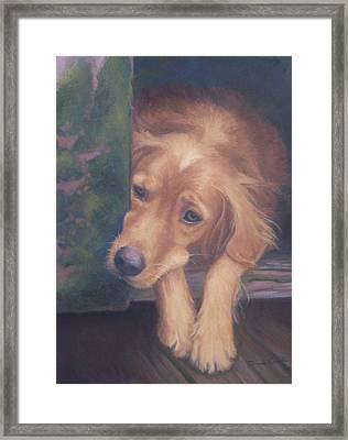 Charlie's In The Doghouse Framed Print by Diane Caudle
