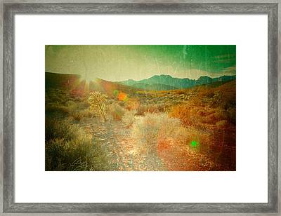 Framed Print featuring the photograph Charm by Mark Ross