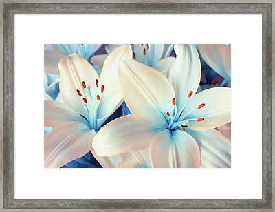 Charming Elegance Framed Print by Iryna Goodall