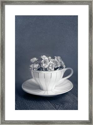 Charms Of The Past Framed Print