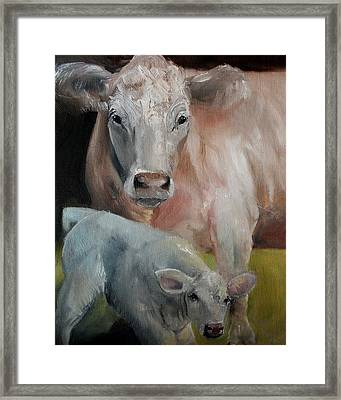 Charolais Cow Calf Painting Framed Print by Michele Carter