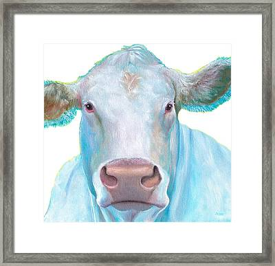 Charolais Cow Painting On White Background Framed Print by Jan Matson