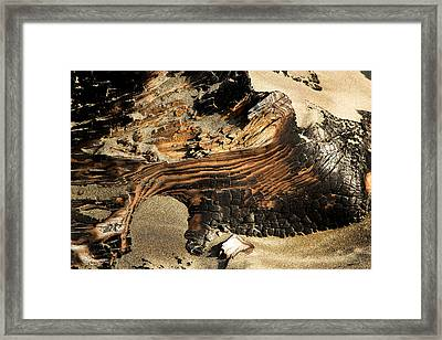 Charred Framed Print
