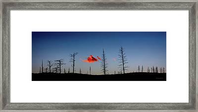 Charred Sunset Framed Print