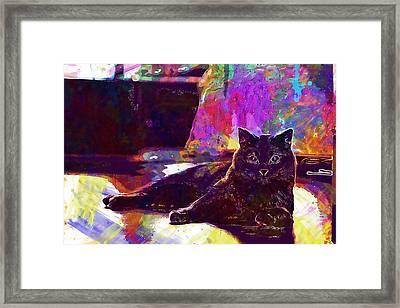 Framed Print featuring the digital art Chartreux Cat Animals Pet Mieze  by PixBreak Art