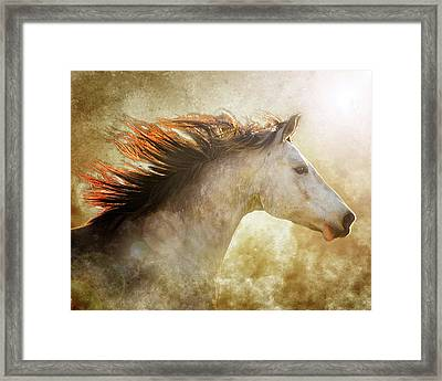 Chase The Light Framed Print by Ron McGinnis