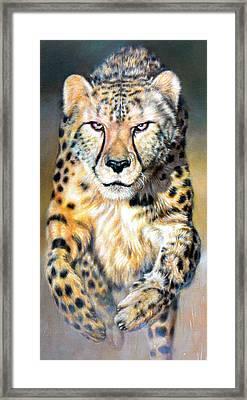 Chaser Framed Print by Riek  Jonker