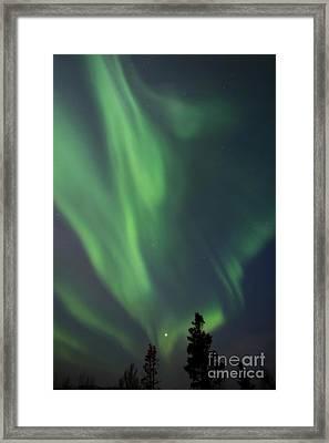 chasing lights II natural Framed Print by Priska Wettstein