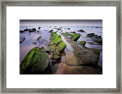 Chasing The Dragons Framed Print