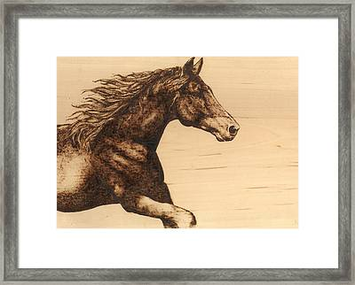 Chasing The Horizon Framed Print by Laura Lobner