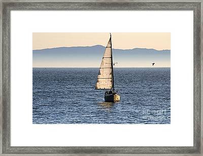 Chasing The Mist Framed Print by Clayton Bruster