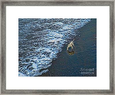 Chasing Waves Framed Print