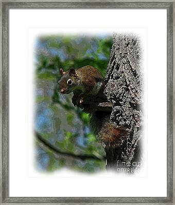 Chatterbox Framed Print by Deborah Johnson