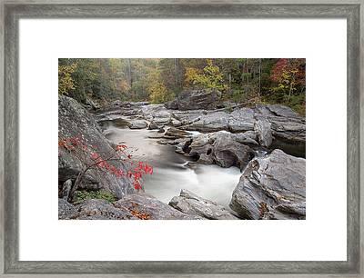 Chattooga River 15 Framed Print