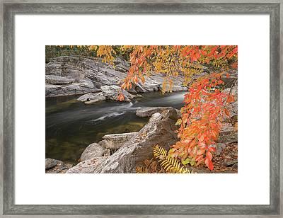 Chattooga River 16 Framed Print